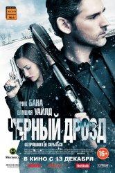 Смотреть Черный дрозд онлайн в HD качестве 720p