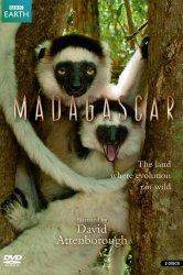 Смотреть BBC: Мадагаскар онлайн в HD качестве