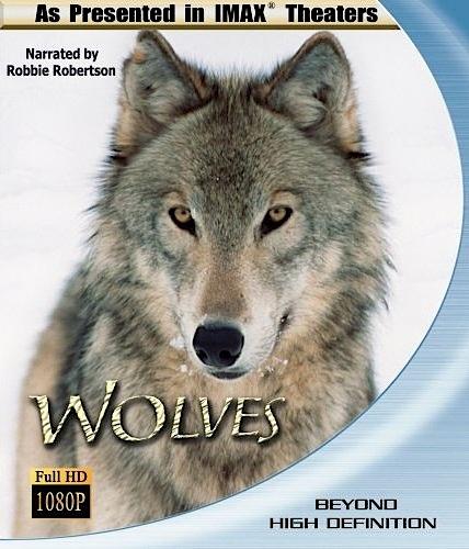 Волк 1994 фильм смотреть