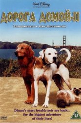Смотреть Дорога домой 2: Затерянные в Сан-Франциско онлайн в HD качестве