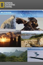 Смотреть Дикая природа России (мини-сериал) онлайн в HD качестве