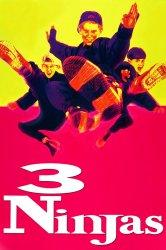 Смотреть Три ниндзя онлайн в HD качестве