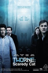 Смотреть Торн: Пуганая ворона онлайн в HD качестве