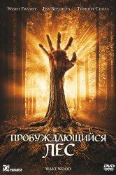 Смотреть Пробуждающийся лес онлайн в HD качестве