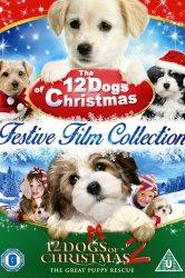 Смотреть 12 рождественских собак онлайн в HD качестве