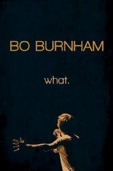 Смотреть Бо Бёрнем: Что. онлайн в HD качестве