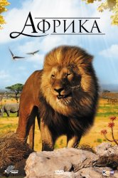 Смотреть Африка 3D онлайн в HD качестве 720p
