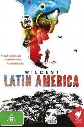Смотреть В дебрях Латинской Америки онлайн в HD качестве