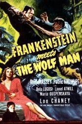 Смотреть Франкенштейн встречает Человека-волка онлайн в HD качестве