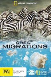 Смотреть Великие миграции онлайн в HD качестве 720p