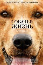 Смотреть Собачья жизнь онлайн в HD качестве 720p