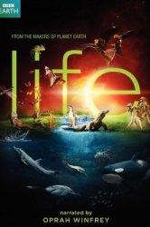 Смотреть BBC: Жизнь онлайн в HD качестве 720p