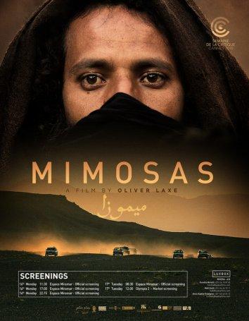 Смотреть Мимозы онлайн в HD качестве 720p