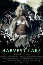 Смотреть Озеро желаний онлайн в HD качестве