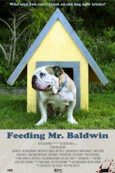 Смотреть Прожорливый мистер Болдуин онлайн в HD качестве