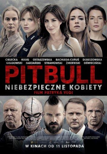 Смотреть Питбуль. Опасные женщины онлайн в HD качестве 720p