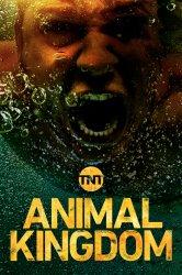 Смотреть Царство животных / По волчьим законам онлайн в HD качестве