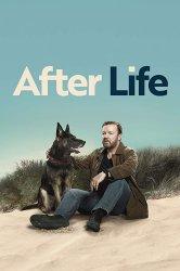 Смотреть Жизнь после смерти онлайн в HD качестве 720p