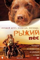 Смотреть Рыжий пес онлайн в HD качестве 720p
