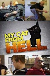 Смотреть Адская кошка онлайн в HD качестве