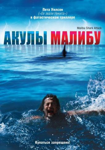 Смотреть Акулы Малибу онлайн в HD качестве 720p