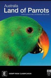 Смотреть Австралия: страна попугаев онлайн в HD качестве