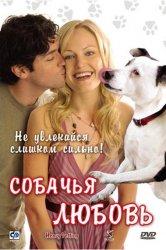 Смотреть Собачья любовь онлайн в HD качестве 720p