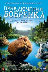 Смотреть Приключения бобрёнка онлайн в HD качестве 720p