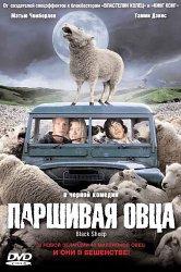 Смотреть Паршивая овца онлайн в HD качестве
