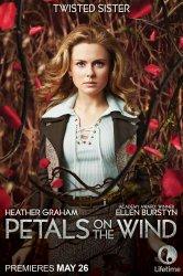 Смотреть Лепестки на ветру онлайн в HD качестве