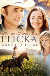 Смотреть Флика 3 / Флика: гордость страны онлайн в HD качестве 720p