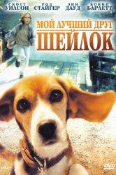 Смотреть Мой лучший друг Шейлок онлайн в HD качестве 720p