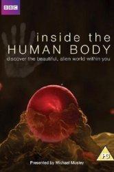 Смотреть Внутри человеческого тела онлайн в HD качестве
