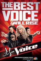 Смотреть Голос Америки онлайн в HD качестве