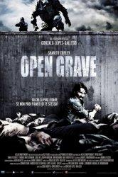 Смотреть Открытая могила онлайн в HD качестве