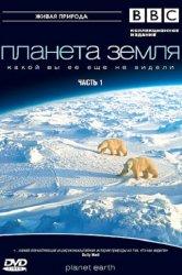 Смотреть BBC: Планета Земля онлайн в HD качестве