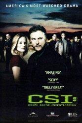 Смотреть C.S.I. Место преступления онлайн в HD качестве