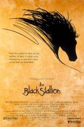 Смотреть Черный скакун онлайн в HD качестве 720p