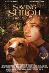 Смотреть Спасая Шайло онлайн в HD качестве
