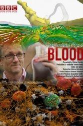 Смотреть BBC: Удивительный мир крови онлайн в HD качестве 720p