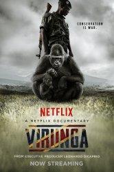 Смотреть Вирунга онлайн в HD качестве 720p
