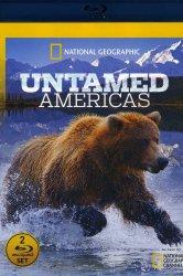 Смотреть Дикая природа Америки онлайн в HD качестве