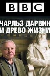 Смотреть Чарльз Дарвин и Древо жизни онлайн в HD качестве 720p