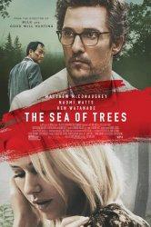 Смотреть Море деревьев онлайн в HD качестве