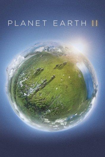 Смотреть Планета Земля 2 онлайн в HD качестве 720p