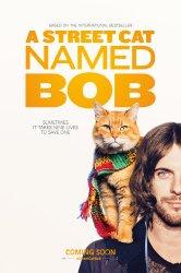 Смотреть Уличный кот по кличке Боб онлайн в HD качестве 720p