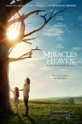 Смотреть Чудеса с небес онлайн в HD качестве 720p