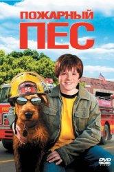 Смотреть Пожарный пес онлайн в HD качестве