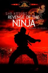 Смотреть Месть ниндзя онлайн в HD качестве 720p