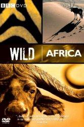 Смотреть BBC: Дикая Африка онлайн в HD качестве